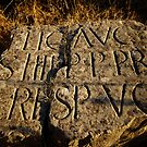 Medieval Inscription by Robyn Carter