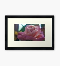 Close up Nature Framed Print