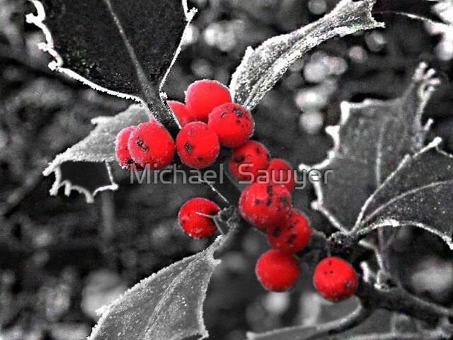 The Christmas Feel by Michael  Sawyer