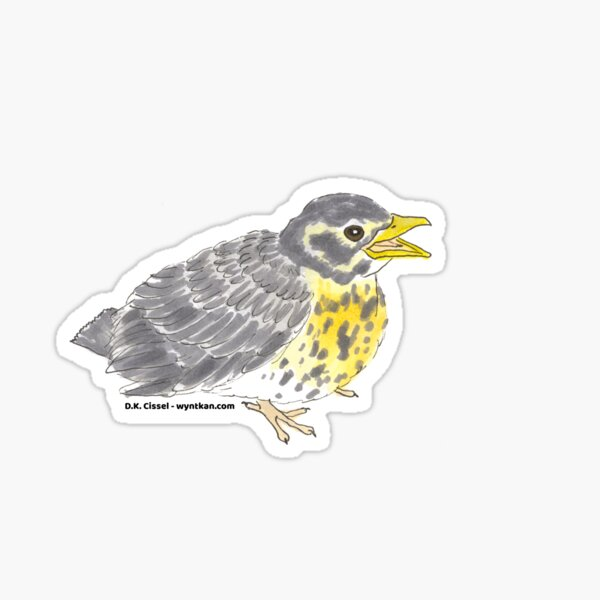 Baby Robin Sticker