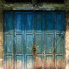 Old China Door by naphotos