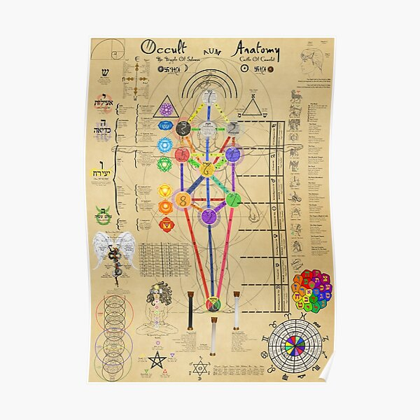 Occult Anatomy  Poster