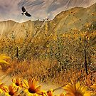 The Sunflowers Are Blooming, Dad! by CarolM