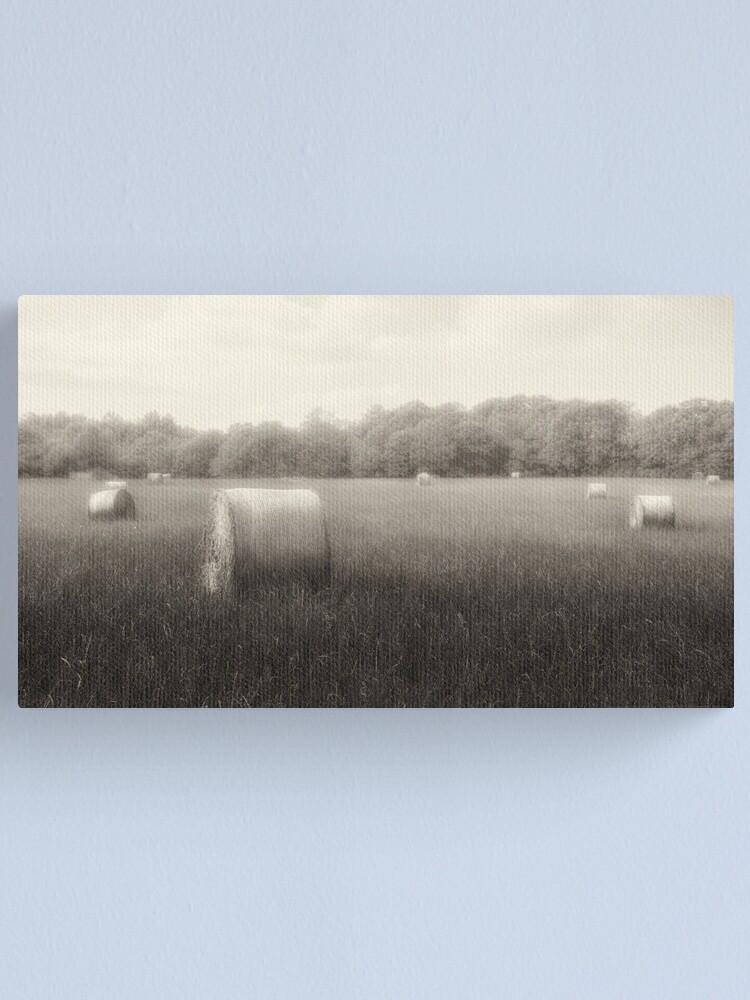 Alternate view of Hayfield in Fog  2012 Canvas Print