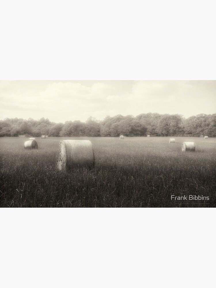 Hayfield in Fog  2012 by organicman2