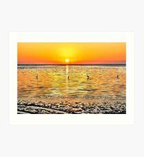 Herons at Sunrise (HDR) Art Print