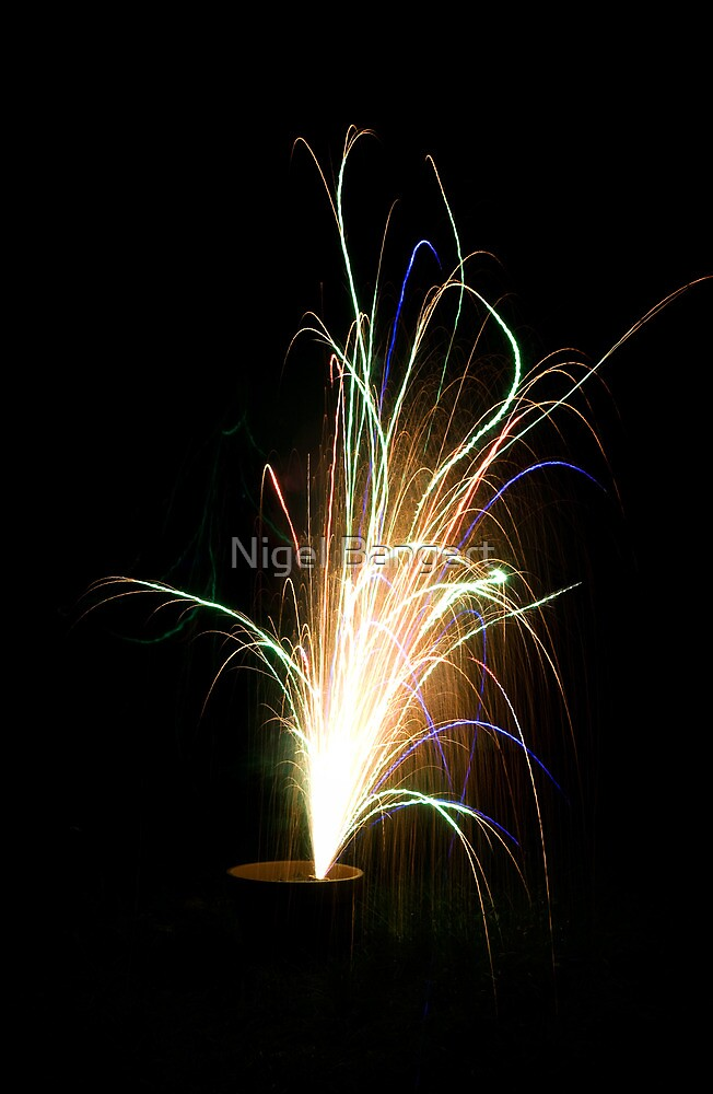 Firework by Nigel Bangert