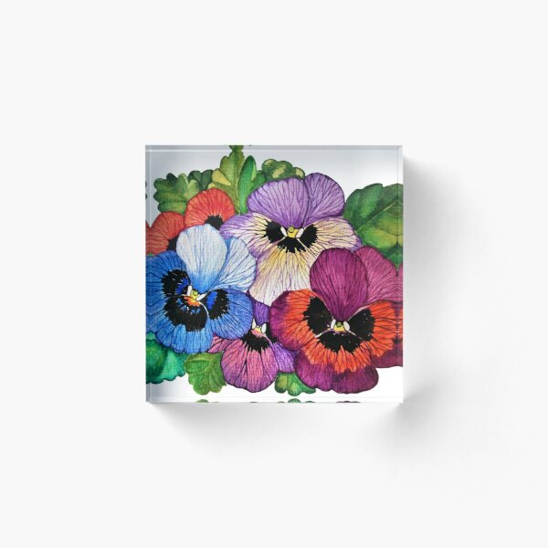 Pansy Flowers In Watercolor  Acrylic Block