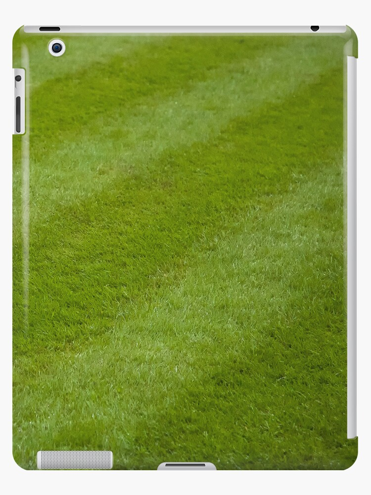 Green grass Ipad case by Magdalena Warmuz-Dent