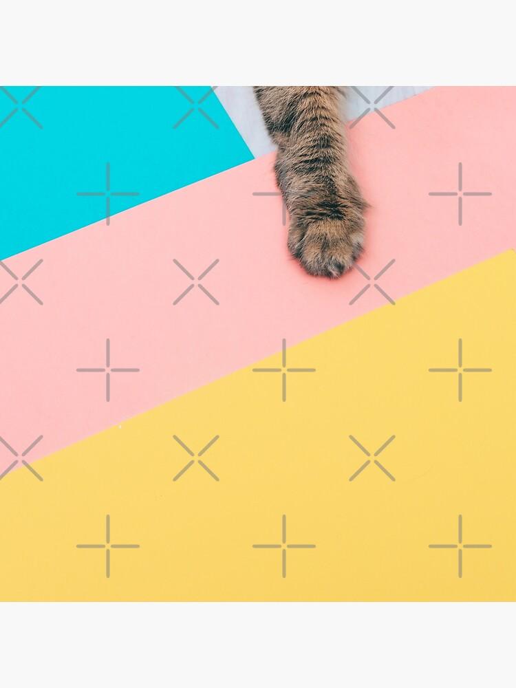 Cat's paw by KatyaHavok
