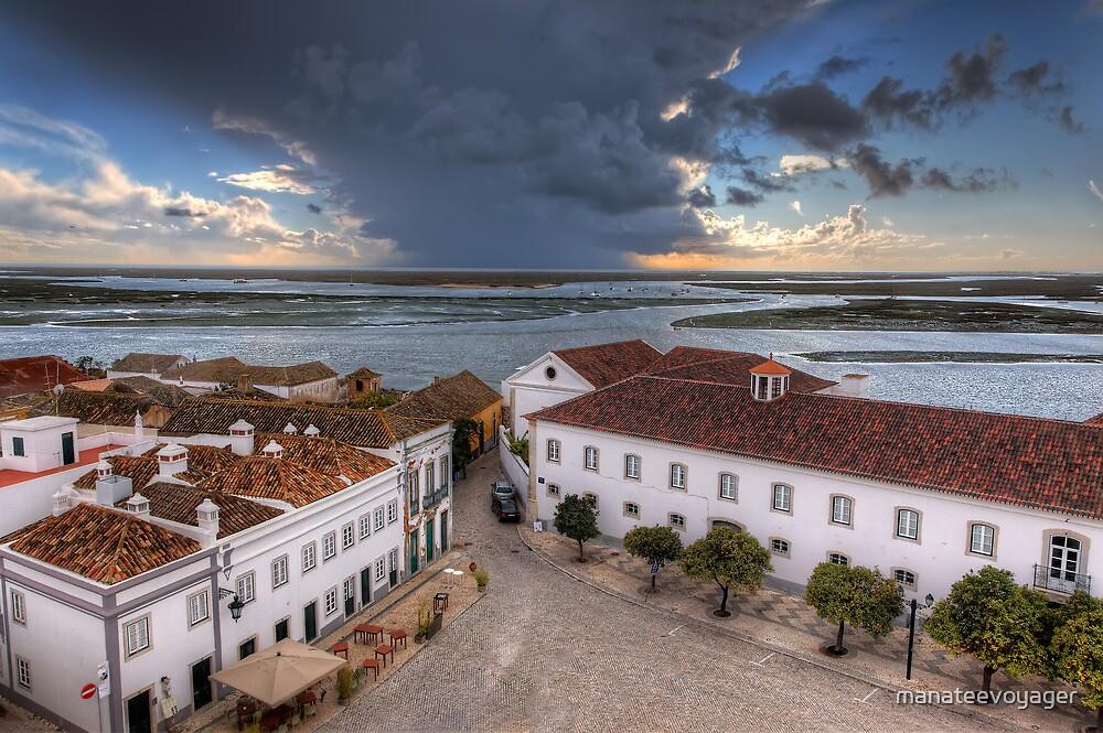 The Rio Formosa by manateevoyager