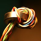 Swivelled Cables by Somerset33
