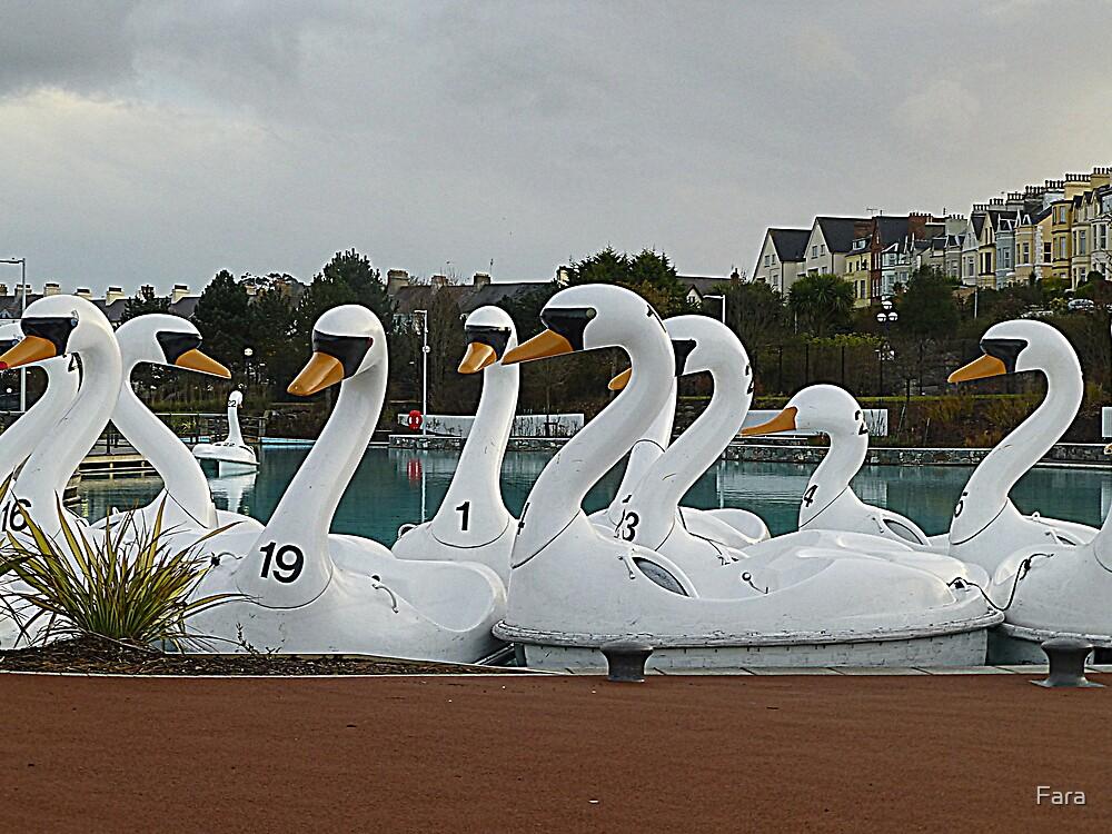 Ride A White Swan by Fara