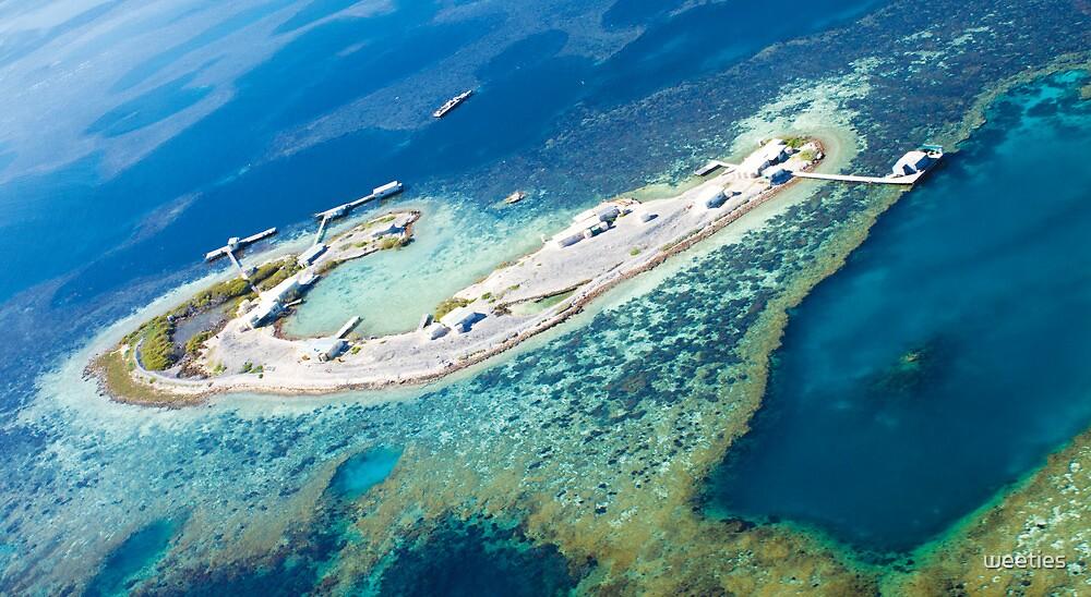 Davis Island by weeties