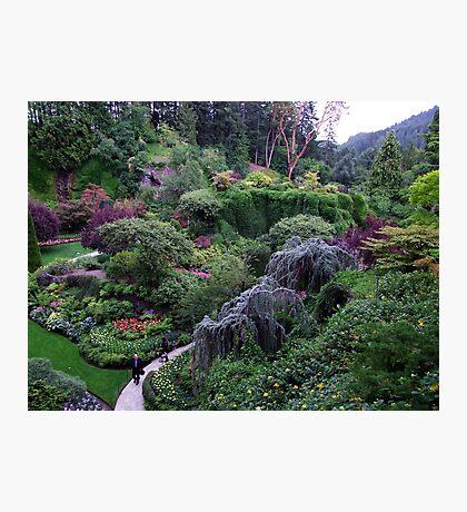 The Sunken Garden Photographic Print