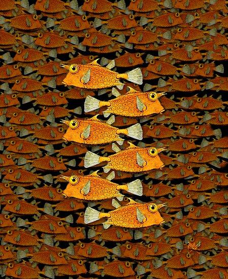 many fish (school) by dennis william gaylor