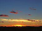 Prairie Starburst by Greg Belfrage