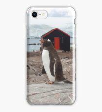 Penguin Post Office iPhone Case/Skin