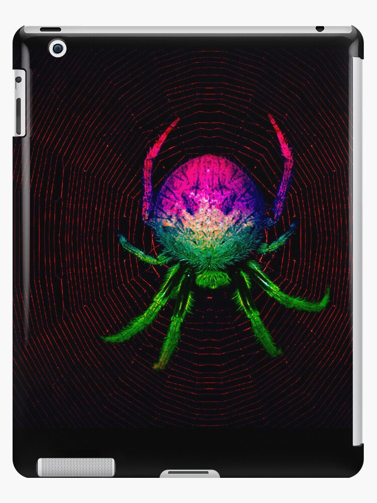 My nightmarish technicolour dreamspider by Peter Krause
