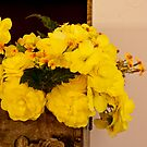 Yellow Begonias in Rose Box - Digital Oil Painting by Sandra Foster
