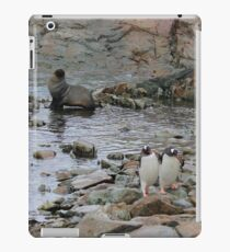 Antarctic Friends iPad Case/Skin