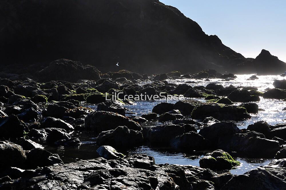 Misty Rocks by LilCreativeSpce