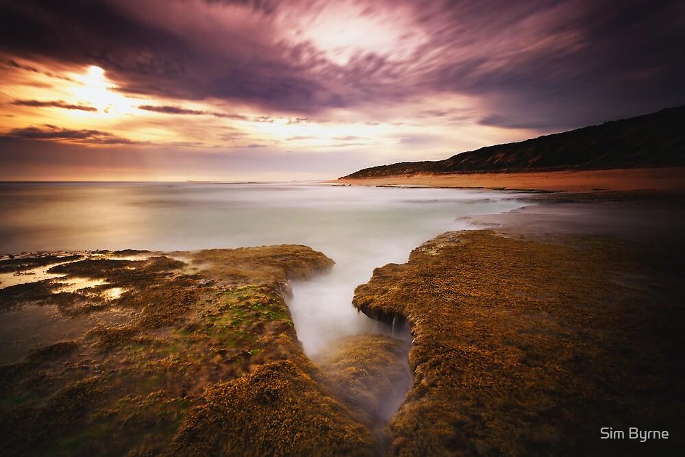 Golden Tides by Simone Byrne