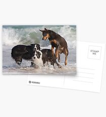 Frolic Postcards