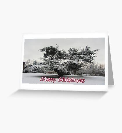 Merry Christmas - Tree Greeting Card