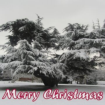 Merry Christmas - Tree by hartrockets