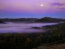 Morning Song by Carolyn  Fletcher