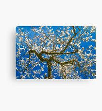Almond Blossum inspired by Vincent van Gogh Canvas Print