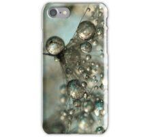 Dandy in Silver & Blue iPhone Case/Skin