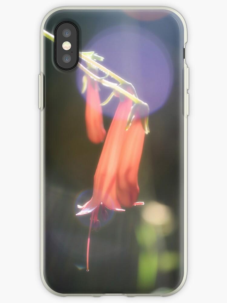 Fuschia Phone by Nigel Bangert