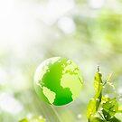green globe by naphotos