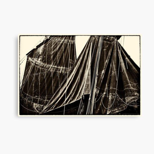 Sails, The Belle Angel  2012 Canvas Print