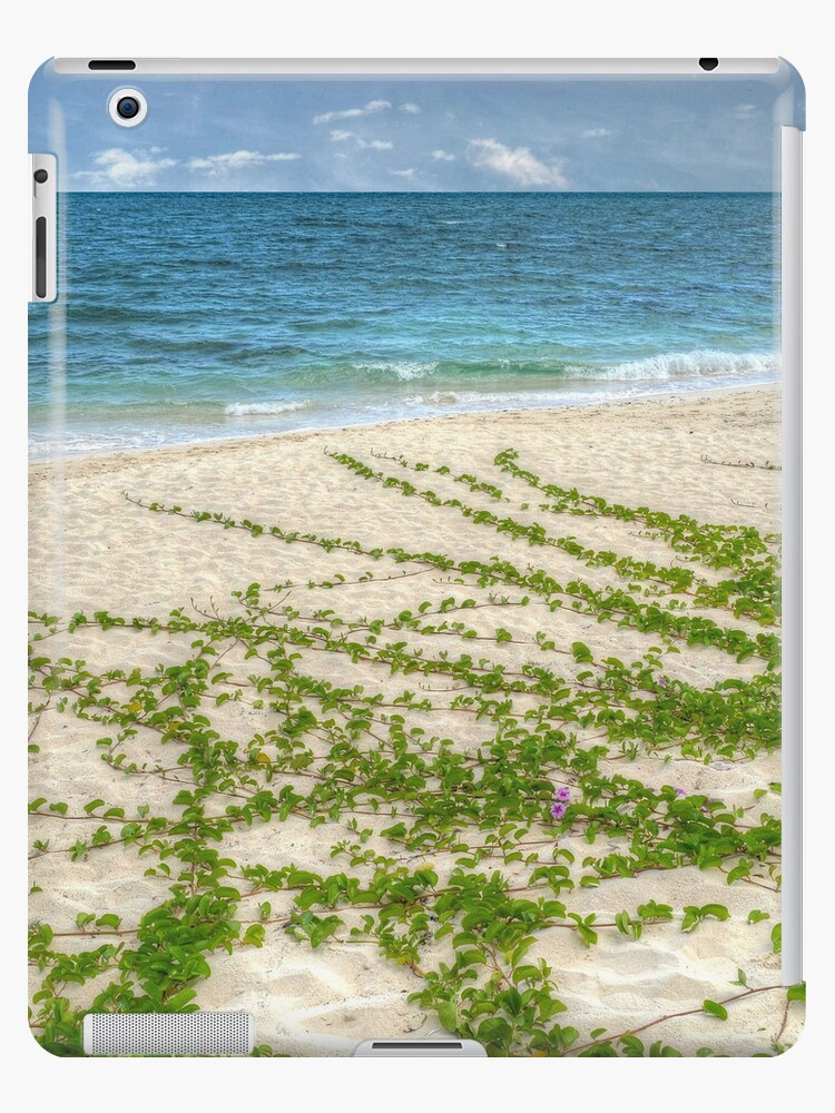 Beach in Western Nassau, The Bahamas   iPad Case by Jeremy Lavender Photography