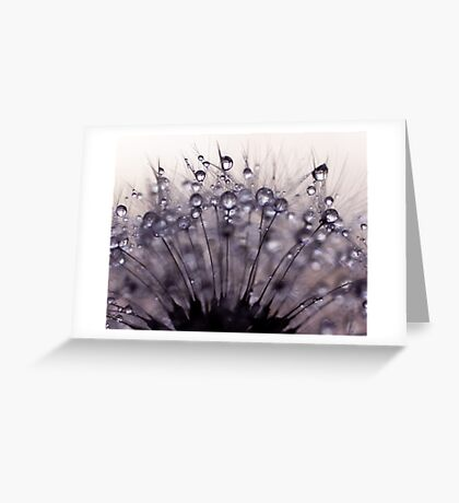 droplets of mauve Greeting Card