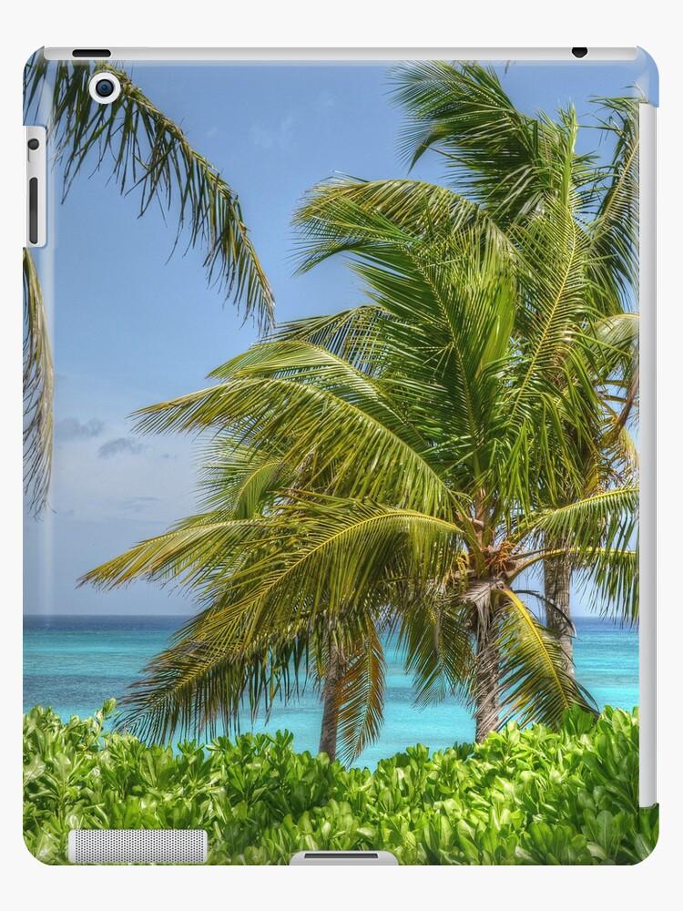 Tropical Scenery | iPad Case by Jeremy Lavender Photography
