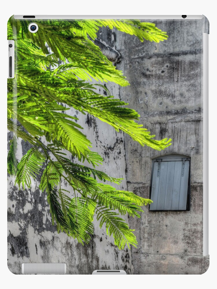 The Hidden Window | iPad Case by Jeremy Lavender Photography