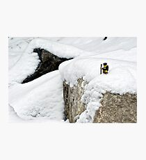 Hiker on snowy cliff Photographic Print