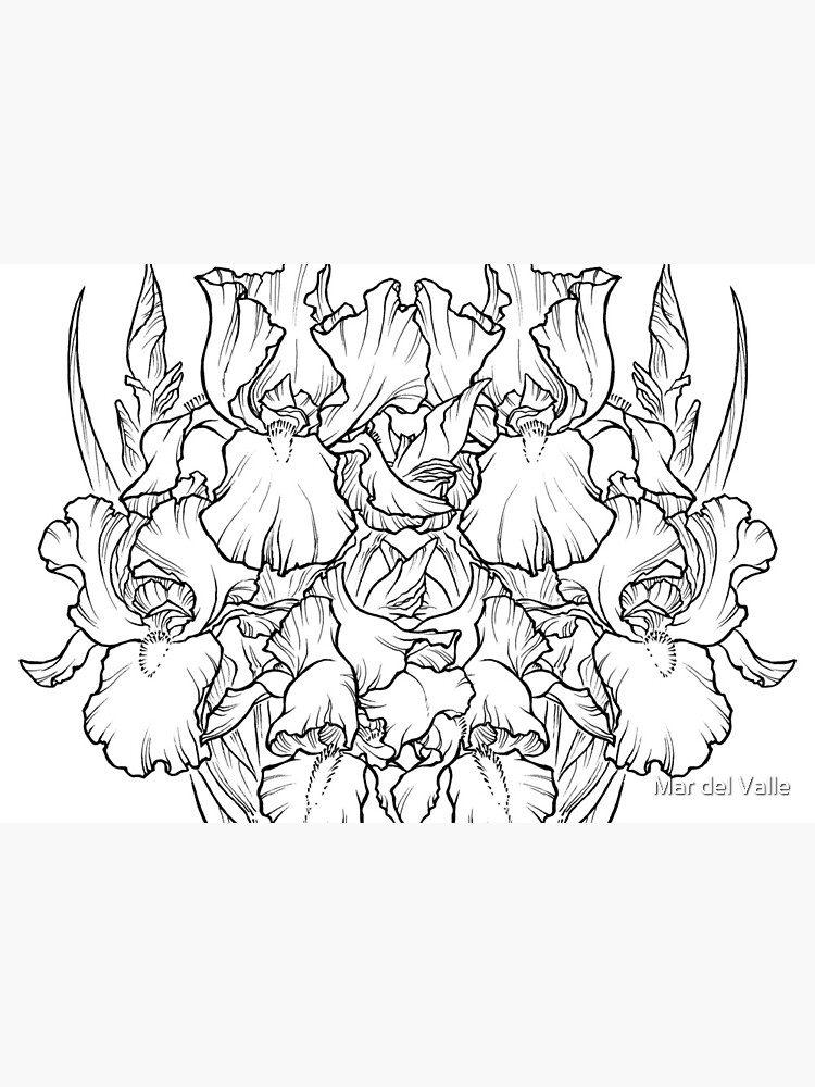 Irises - Black Line by mardelvallearts