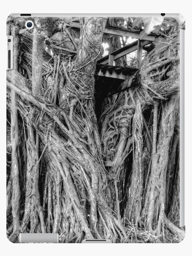 Tree House | iPad Case by Jeremy Lavender Photography