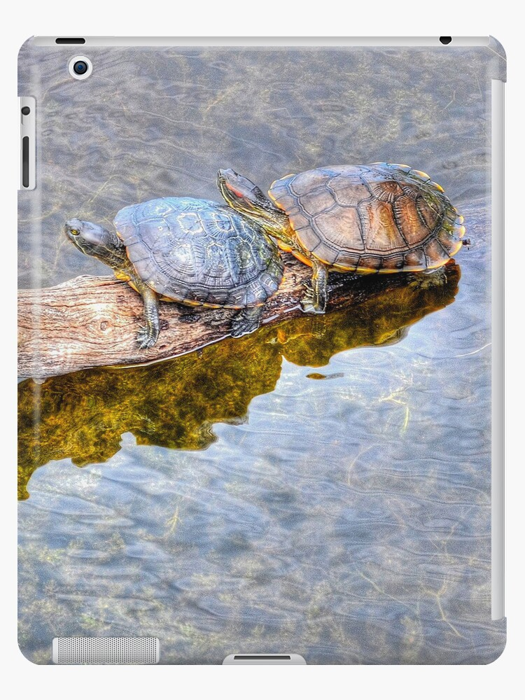 Together | iPad Case by Jeremy Lavender Photography