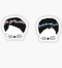 dan and phil with flower crowns Sticker