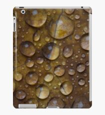 Fall Water Droplets iPad Case/Skin