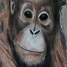 Orangutan Iphone Case by gogston