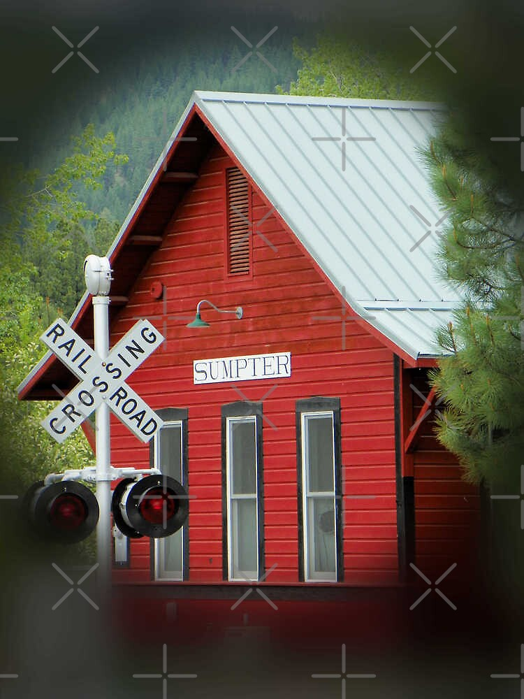 The Red Depot by Betty  Town Duncan