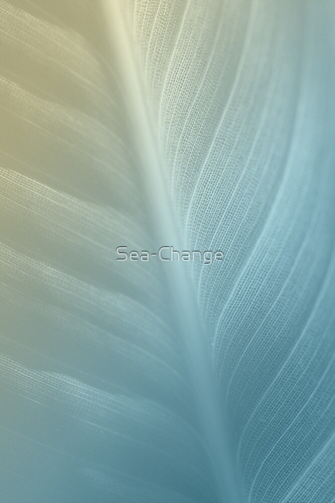 Soft Hues by Sea-Change