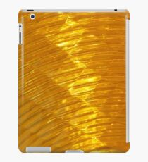 Reflector iPad Case/Skin